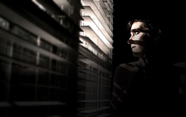 espionage_blinds